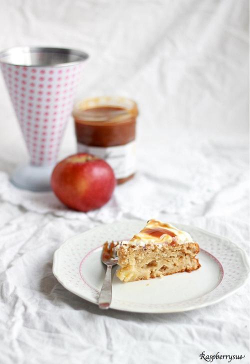 Apfel Schmand Kuchen1