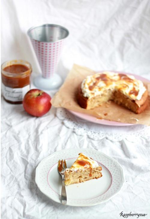 Apfel Schmand Kuchen2