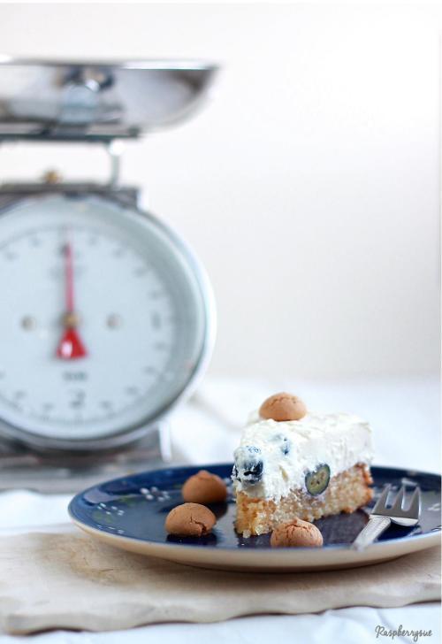 Blaubeer Biskuit Torte4
