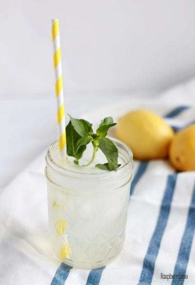 Minty Lemonade5
