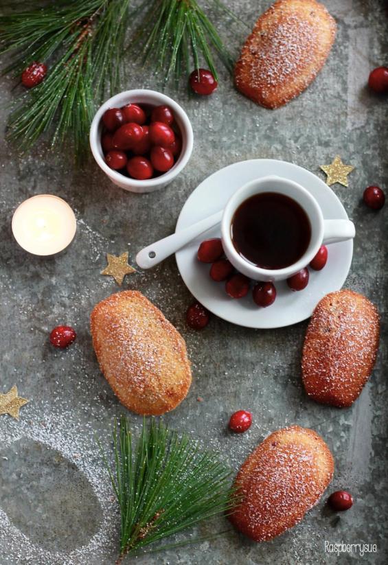 Cranberry Madeleines 1